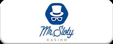 Mr Sloty logo