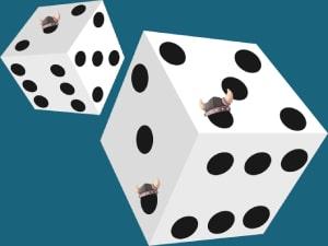 CasinoViking Dices